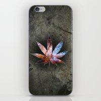 marijuana iPhone & iPod Skins featuring Marijuana Leaf - Design 2 by Spooky Dooky