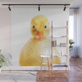 Duckling Portrait Wall Mural