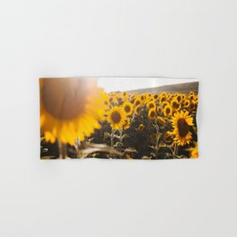 Sunflower's Season (III) Hand & Bath Towel