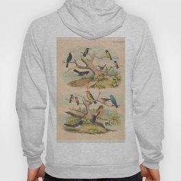 Caldwall James 1739 1819 (E_ _1626 The cotillion dance Hoody
