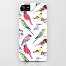 Watercolor spring birds iPhone Case