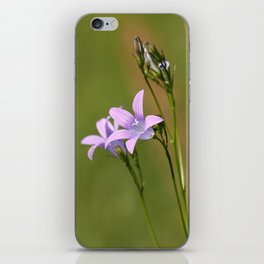 Bluebell iPhone Skin
