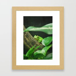 Vibrant Green Framed Art Print