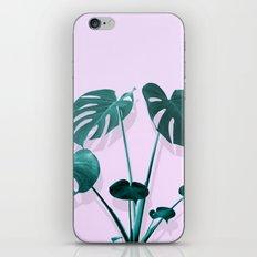 Monstera Palm on Musk iPhone Skin