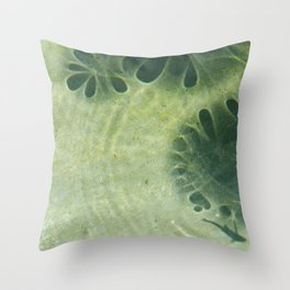 Ripples and Shadows 2 Throw Pillow