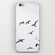 Takeoff iPhone Skin