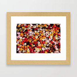 Leaves Galore Framed Art Print