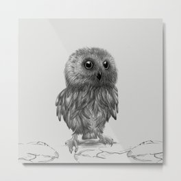 Baby owl Owlet Owl illustration Metal Print