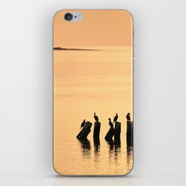 Cormorant Pier iPhone Skin