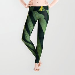 Leaf Me Alone - Palm Leaves - Hawaii Leggings