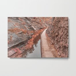 Paw Paw Boardwalk Trail - Pastel Fantasy Metal Print