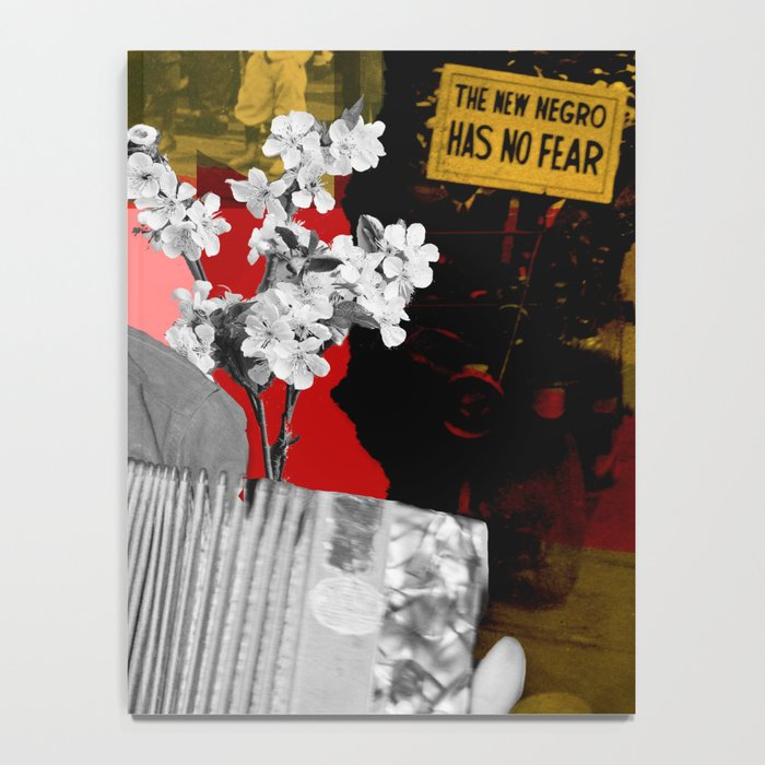 the new negro has no fear Notebook