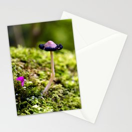 Small World Stationery Cards