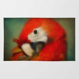 Red Scarlet Macaw Parrot Rug