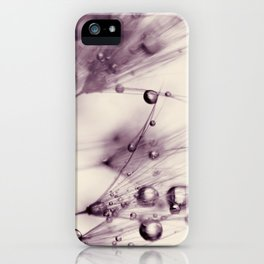 dandelion aubergine iPhone Case
