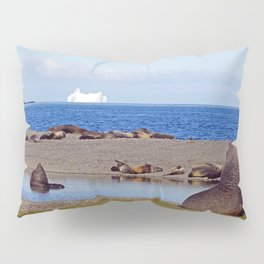 Fur seals with iceberg in the distance Pillow Sham