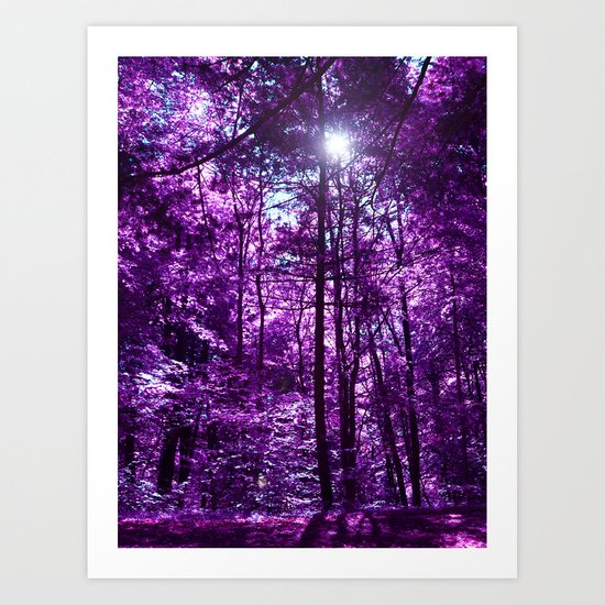 purple forest VI Art Print