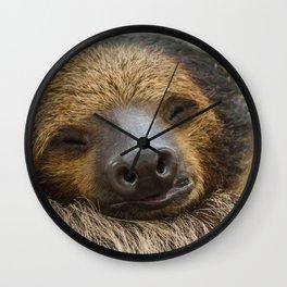 Sloth_005_by_JAMFoto Wall Clock