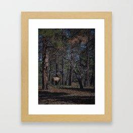 Grand Canyon Elk Framed Art Print