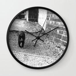 Railway Cat Greeting Wall Clock
