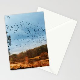 Good Migrations Stationery Cards