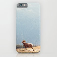 Rams, Landscape Slim Case iPhone 6s