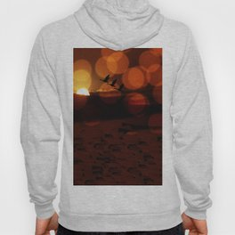 Celebration of Light Hoody