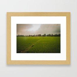 The Rice Paddies of Nepal 001 Framed Art Print