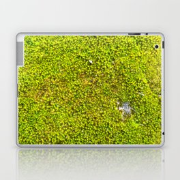 Moss, Nature Trails for Life Laptop & iPad Skin