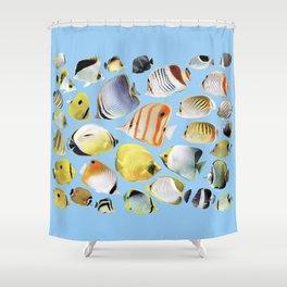 Butterflyfish_Skyblue base Shower Curtain
