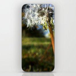 Life is Dandy iPhone Skin