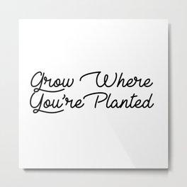 grow where your planted Metal Print