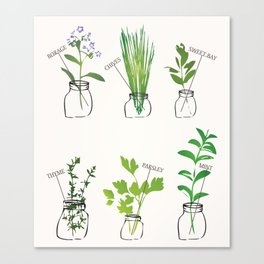 Mason Jar Herbs Canvas Print