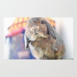 Bunny with circus tent Rug