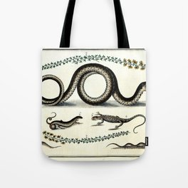 Antique lizard and snake vintage nature book plate drawing victorian art nouveau steampunk oddities Tote Bag