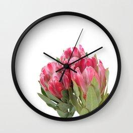 The Three Proteas Wall Clock