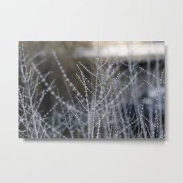 Oregon (thin) Metal Print