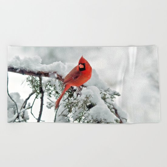 Cardinal on Snowy Branch #2 Beach Towel