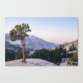 Half Dome - Olmsted Point Canvas Print