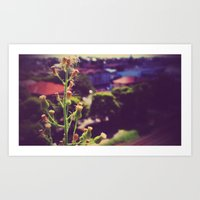 weed Art Prints featuring Weed by ©valourine