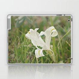 Wild Iris Laptop & iPad Skin