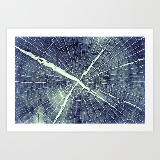 Abstract Bark Art Print