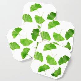 Green Ginkgo Biloba Isolated On White Background Coaster