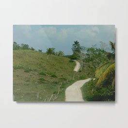Road to Barton Creek Metal Print