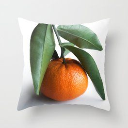 Orange Fruit Photography Throw Pillow