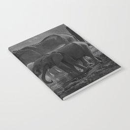 Serengeti Notebook