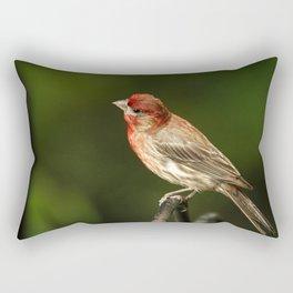 House Finch Rectangular Pillow