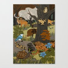 Ecosystem: Forest Canvas Print