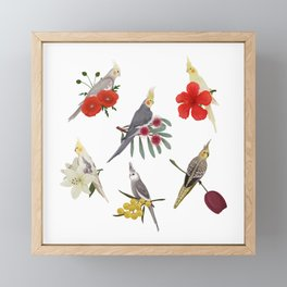 Cockatiels Galore Framed Mini Art Print