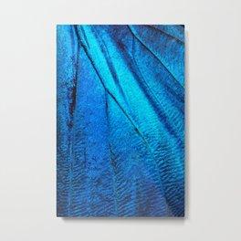 Exotic Blue Butterfly Wing Macro Metal Print